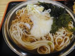 郷そば@大森 ねば冷やしそば+ちくわ天 530+100円 (5).JPG
