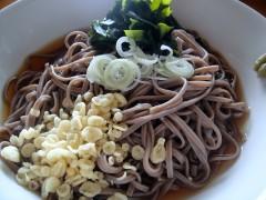 おびなた八割生麺 冷したぬき (2).JPG