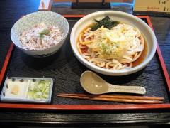 さぬきや@梅屋敷 冷かきあげ/うどん 900円 (5).JPG