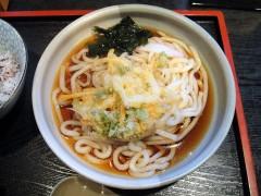 さぬきや@梅屋敷 冷かきあげ/うどん 900円 (6).JPG