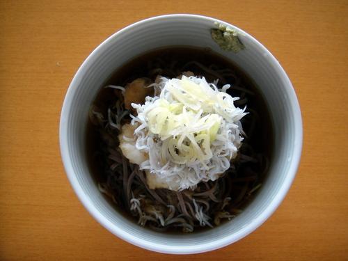 20090808 おびなた八割生麺 冷やししらすおろし (1).JPG
