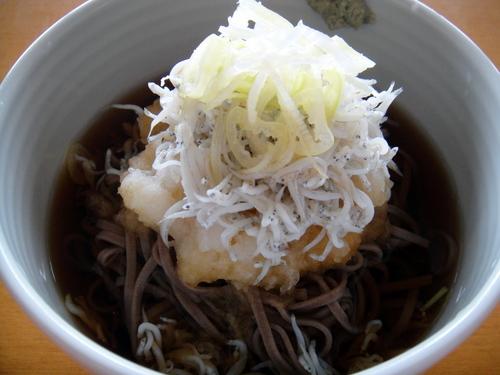 20090808 おびなた八割生麺 冷やししらすおろし (2).JPG