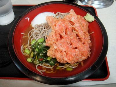 えきめんや@品川 (3) 夏野菜そば450温泉玉子80小エビ天150.JPG