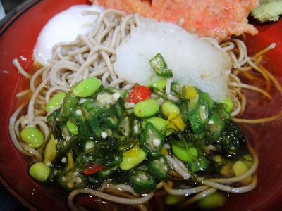 えきめんや@品川 (4) 夏野菜そば450温泉玉子80小エビ天150.JPG