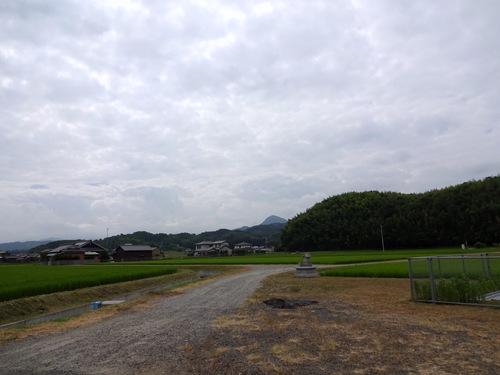 がもううどん@香川県鴨川 (15)ぶっかけ小150あげ100冷やかけ小150温かけ小150.JPG