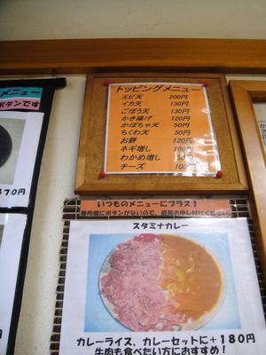 じょうなん亭@五反田(8)冷し山菜おろしそば470ごぼう天130.JPG