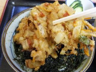 ちどり@鮫洲(4)ミニかき揚げ丼セット冷そば600.JPG