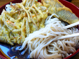 山田製麺所@入谷(4)なす天細うどん380ごぼう天120.JPG