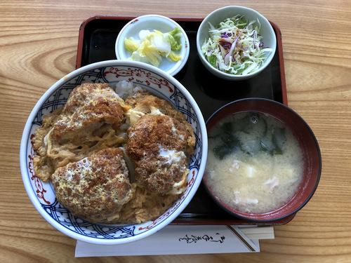 梅好@雪が谷大塚 (6)かつ丼1000.jpg