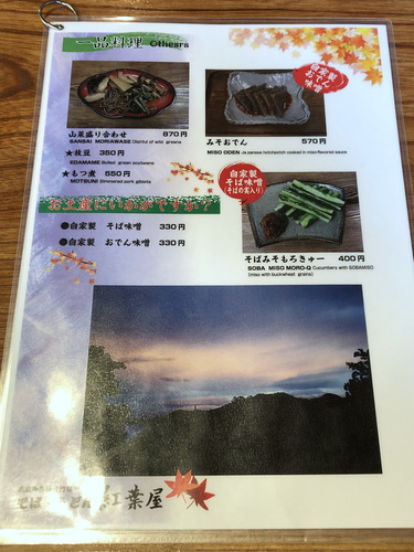 紅葉屋@御岳山 (12)とろろそば980大盛250舞茸天ぷら350いちごミルク600ゆず600.jpg