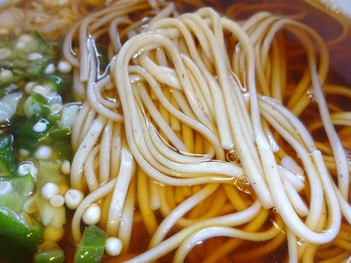 西村製麺@茨城県 (10)更紗そば560.JPG